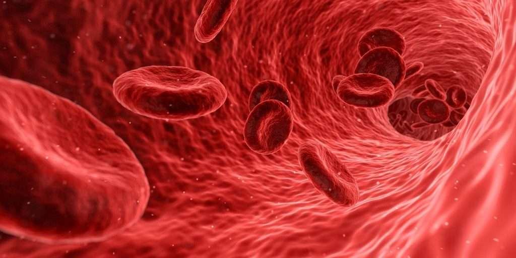 Examenes de sangre 2 1